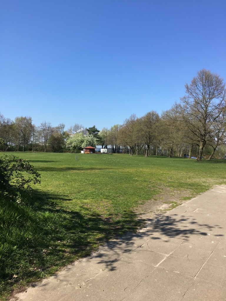 Field and trees at Steinhuder Meer